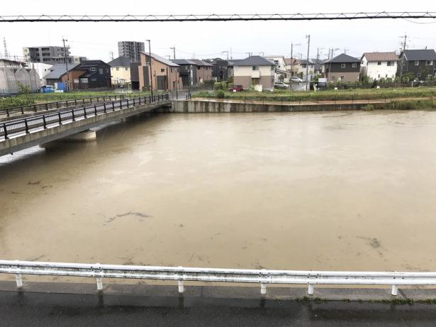 自宅前の川